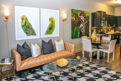 Jefferson-Las-Colinas_Living Room
